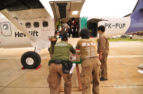 Cindy and Riwut loaded onto the airplane.